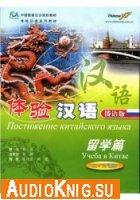 Постижение китайского языка