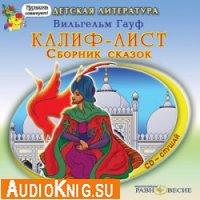 Калиф-аист (аудиокнига)