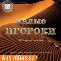 Малые пророки (аудиокнига бесплатно)