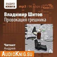 Провокация грешника (аудиокнига)