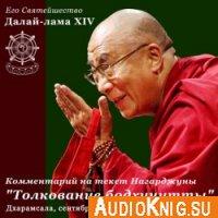 """Учения Его Святейшества Далай-ламы по сочинению Нагарджуны """"Толкование бодхичитты""""(аудиокнига)"""
