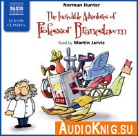 The Incredible Adventures of Professor Branestawm (audiobook)