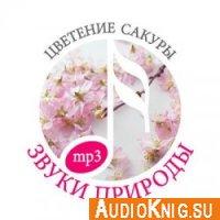 Звуки природы. Цветение сакуры