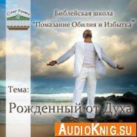Ремез Олег - Рожденный от Духа (аудиокнига)
