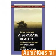 A Separate Reality (Audiobook)